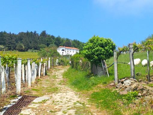 Una de las cosas que más me gustó fue ver los impresionantes caseríos de cerca.